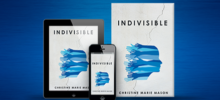 Book Review: Indivisible
